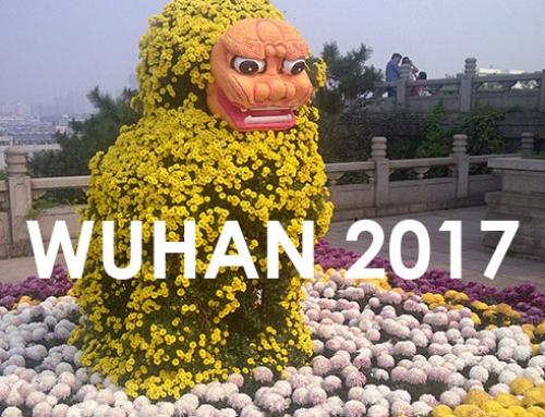 2017 Wuhan Convention : Thérapies Innovantes pour les pathologies liées au vieillissement