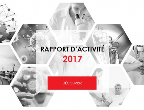 Rapport d'activité 2017 – MATWIN