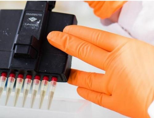 Cancer : étude de la résistance aux traitements